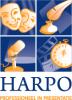 Harpo bvba - Speakers Society Tenuto