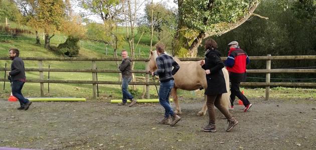 Brandsport: kajakken, klimmen, teambuilding op de knuffelpaal of communiceren met paarden in de Ardennen